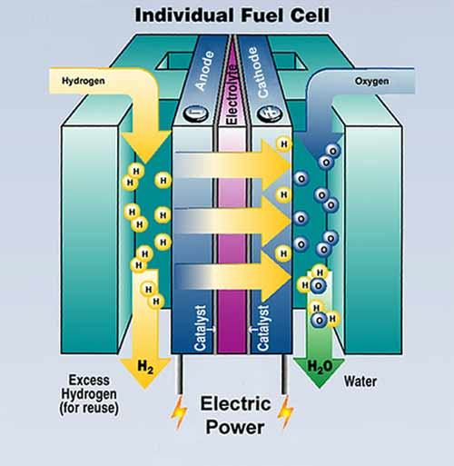 Bear Springs Blossom Science: Fuel cells can use Hydrogen to generate electricity, to power an engine