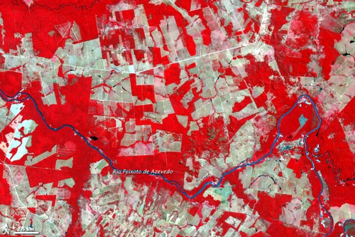 South America rainforests are endangered - see the deforestation in an alarming rate - this is Brazil matogrosso 2006